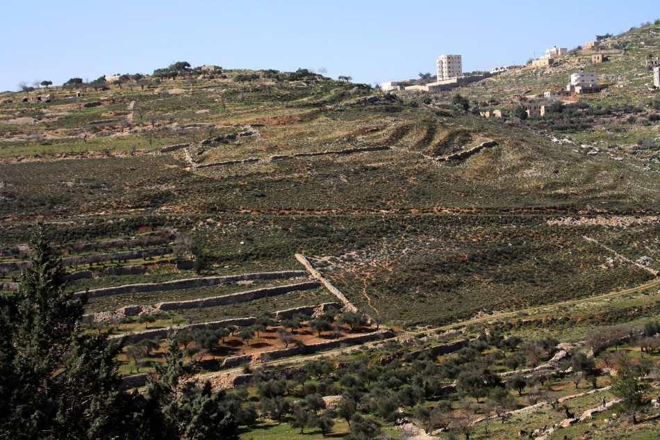 Bethel Israel: The Formation Of Terraced Landscapes In The Judean