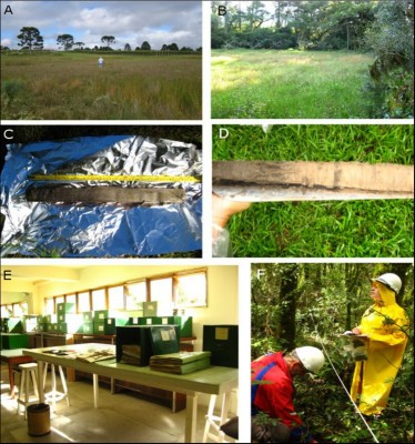 Figure 5. Palaeoecological study: A) Abreu and Garcia bog, CBS; B) Bonin bog, URU; C) organic core sediments from Bonin site; D) organic and sand core sediments from RFT; E) Herbarium of Curitiba Municipality, Paraná; F) moss pollsters collection, CBS.